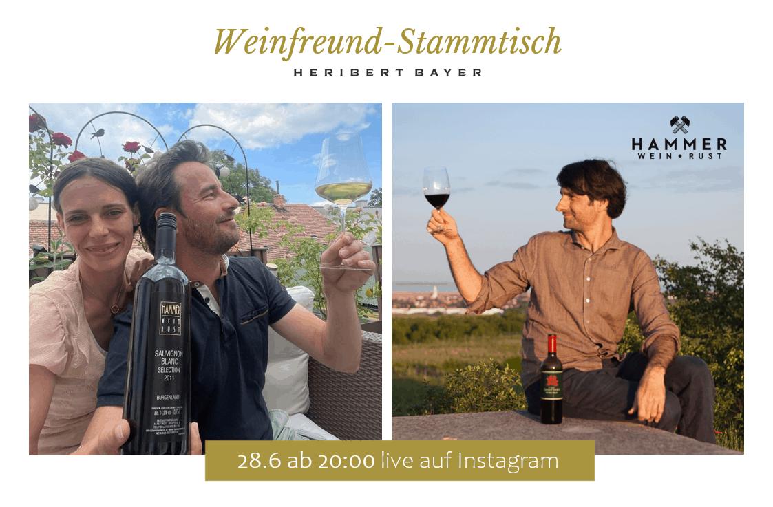 Sauvignon Blanc Selection Weingut Hammer und Blaufränkisch In Signo Sagittarii 2011